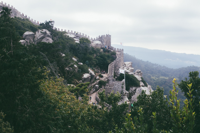 Castelo dos Mouros - The cat, you and us