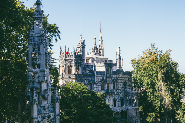 Quinta da Regaleira - The cat, you and us