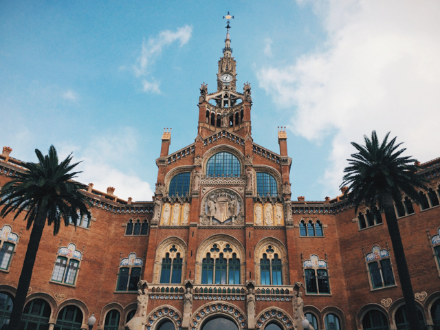 Hospital Sant Pau - The cat, you and us