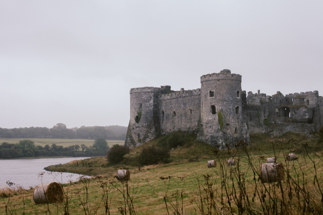 Carew Castle - The cat, you and us