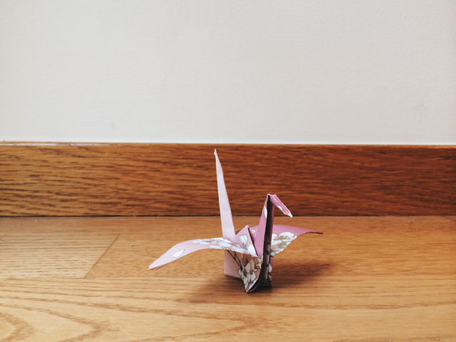 1000 cranes for Piri - The cat, you and us