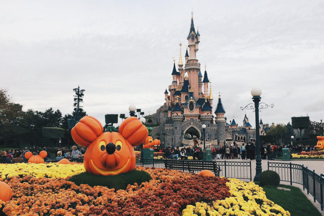 Disneyland Paris - The cat, you and us