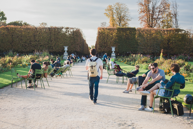 Jardin des Tuileries - The cat, you and us