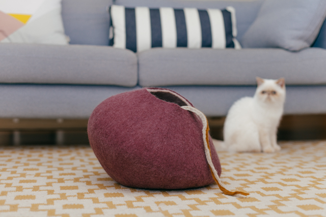 Juno for rronrron AW 2014 - The cat, you and us