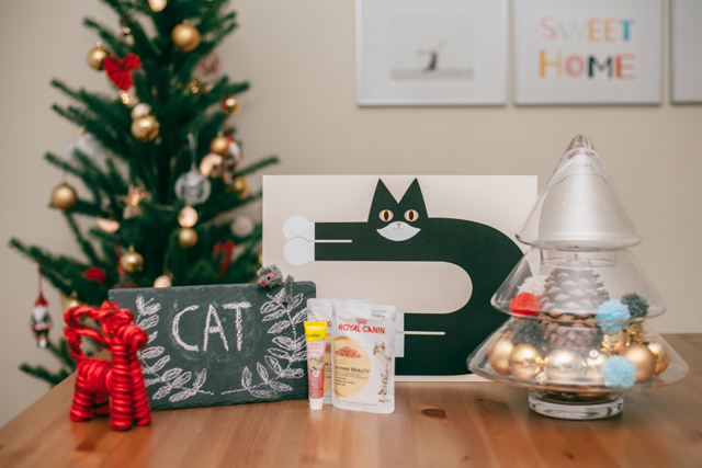 Christmas gifts 2014 - The cat, you and us