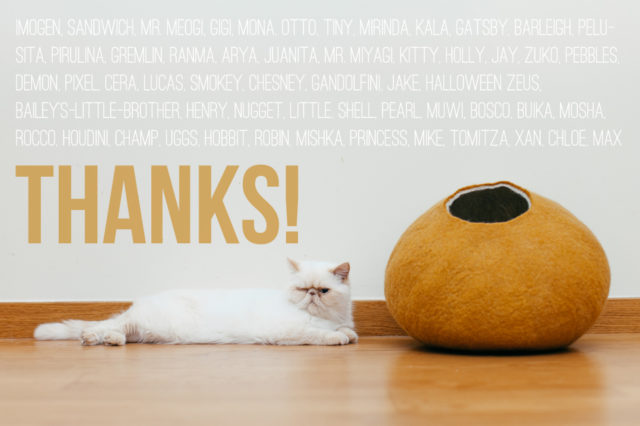 thanks - The cat, you and us