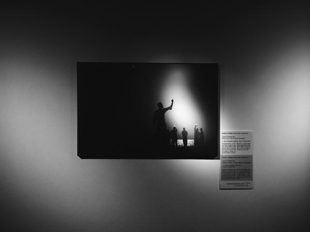 World Press Photo 2014 - The cat, you and us