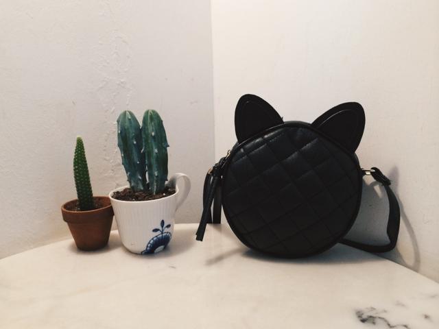 Kitty bag & cacti
