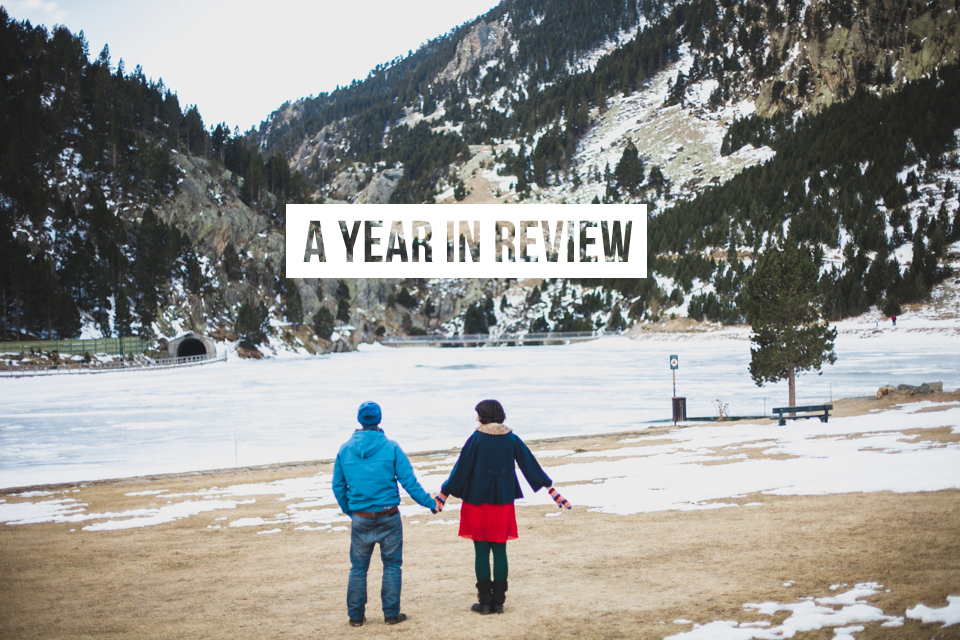 A year in review - The cat, you and us