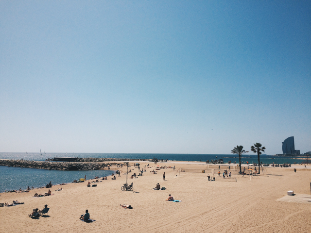Barcelona seaside - The cat, you and us