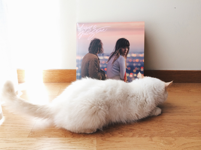 Angus & Julia Stone - The cat, you and us