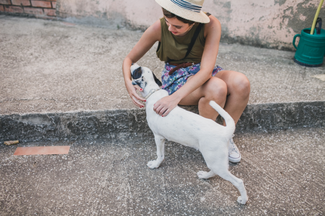Kala the dog & Elena - The cat, you and us