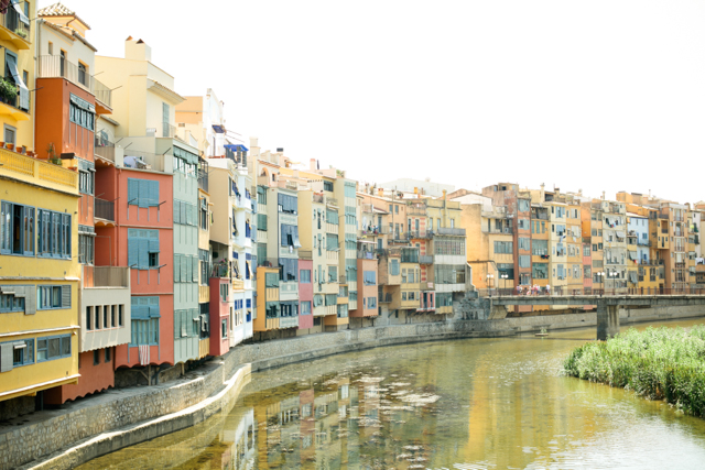 Girona - The cat, you and us