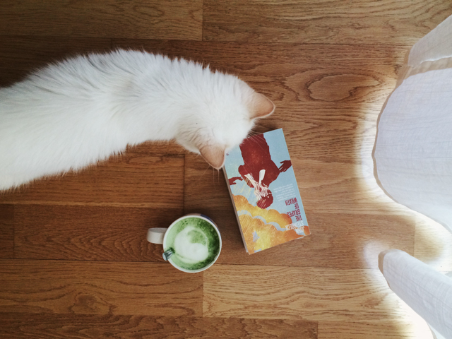 Cat, matcha and Steinbeck - The cat, you and us