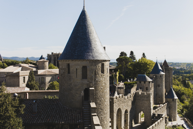 Carcassonne - The cat, you and us