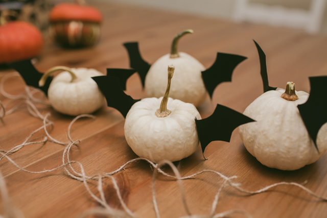 Bat pumpkins - The cat, you and us