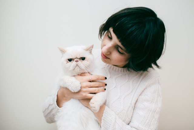 Sparkles are a girl's best friend - The cat, you and us