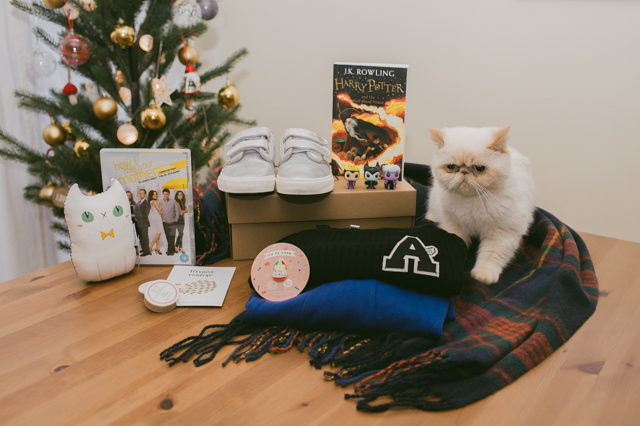 Juno and her Christmas gift haul 2015 - The cat, you and us