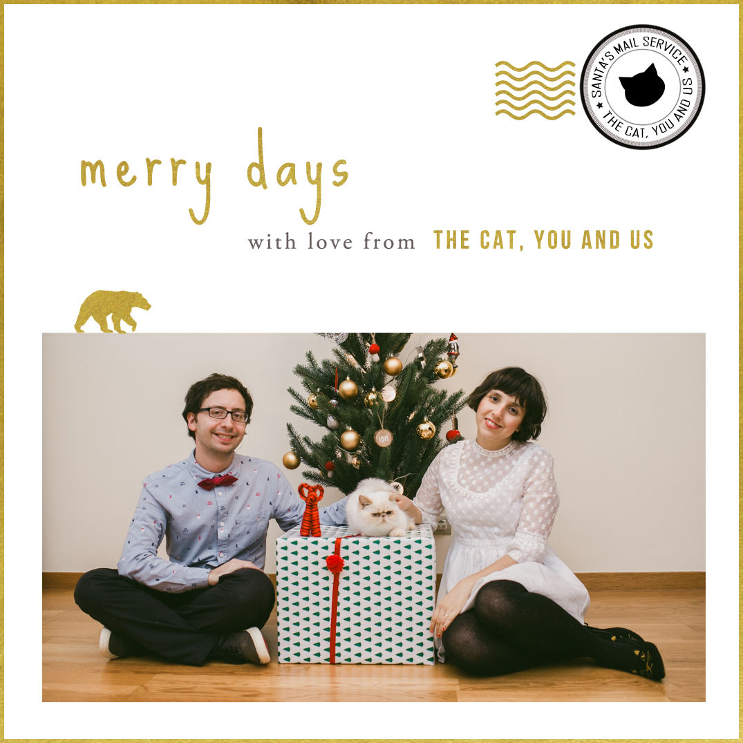 Merry Christmas 2015 - The cat, you and us