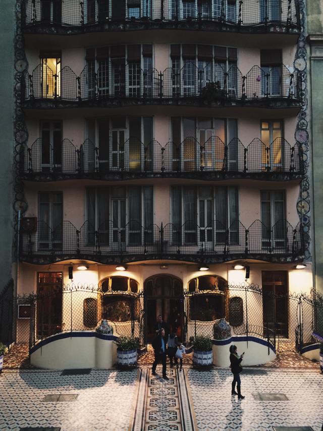 Casa Batlló - The cat, you and us