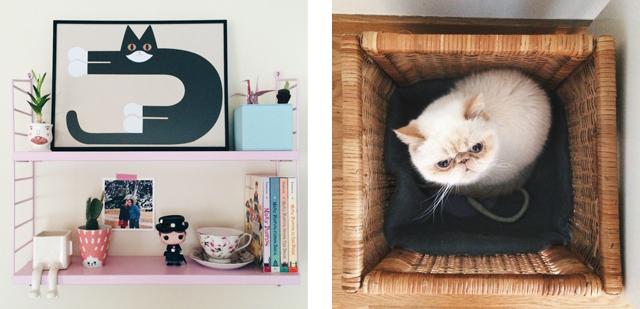 String shelf & Juno