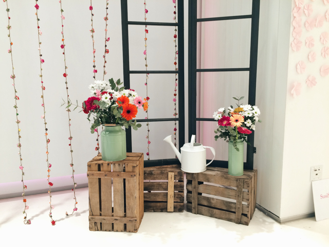Susi sweet dress venue decor - The cat, you and us
