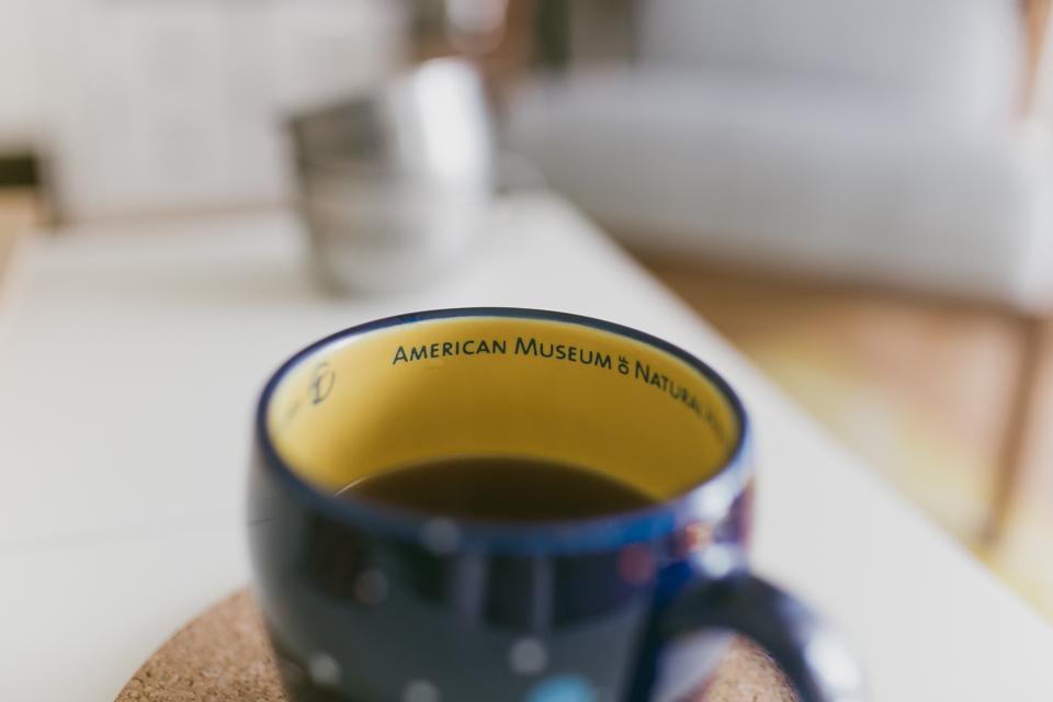 AMNH mug - The cat, you and us