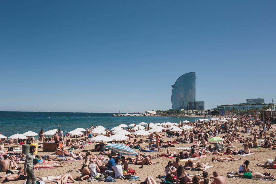 Barceloneta beach - The cat, you and us