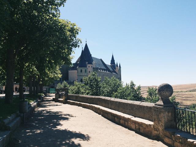 Alcazar Segovia - The cat, you and us