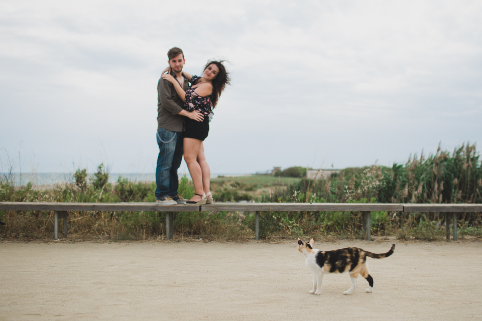 Delta del Lobregat engagement cat