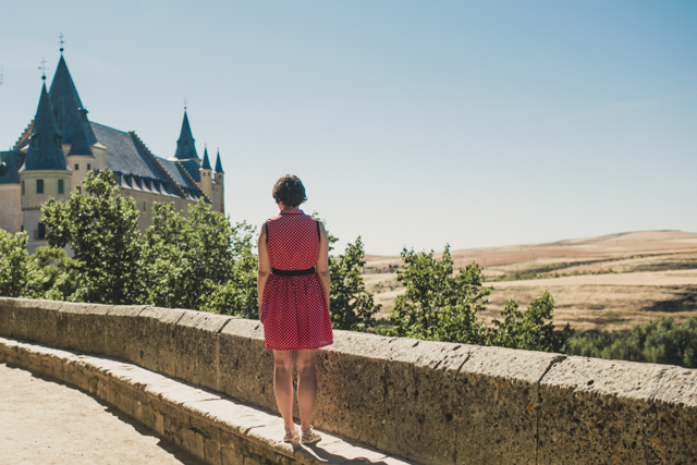 Alcazar de Segovia - The cat, you and us