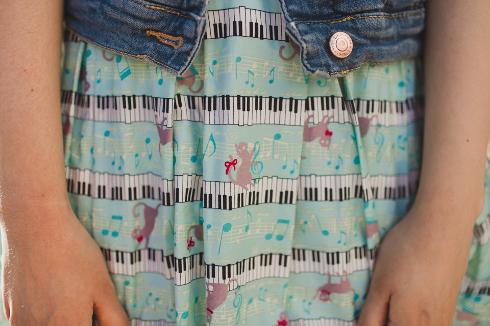 Cats on a piano dress - The cat, you and us
