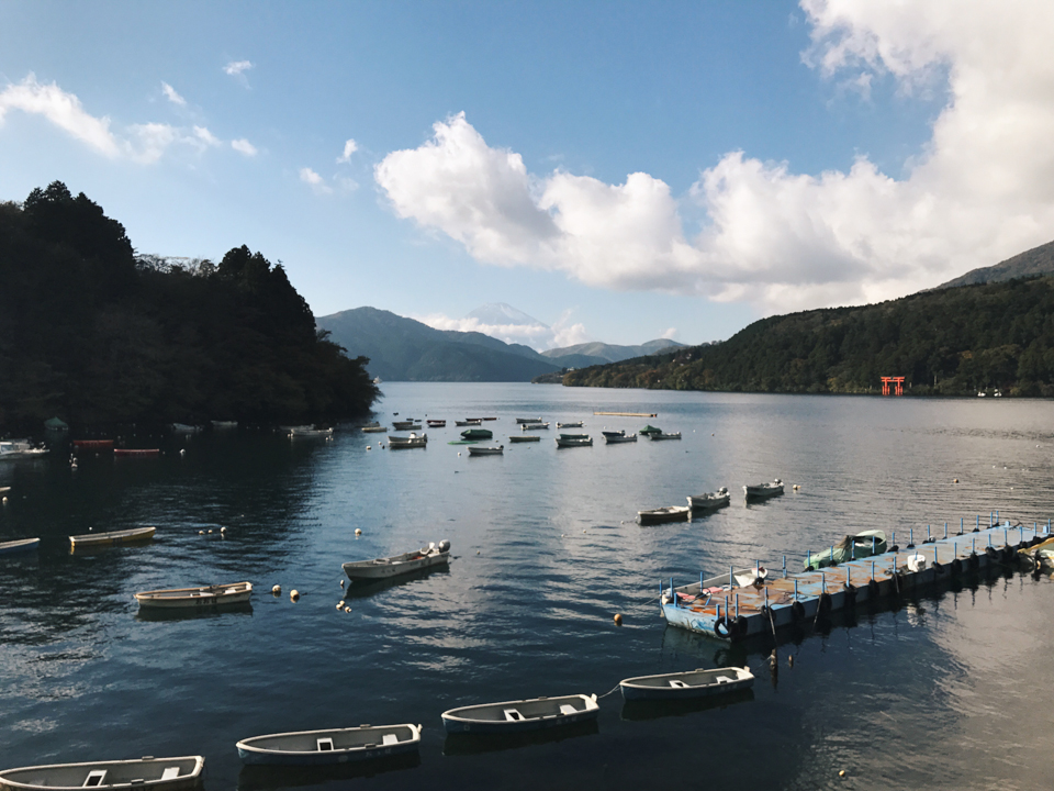 Lake Ashi Hakone - The cat, you and us