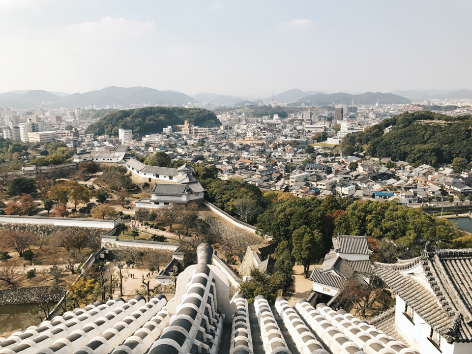 Himeji castle views - The cat, you and us