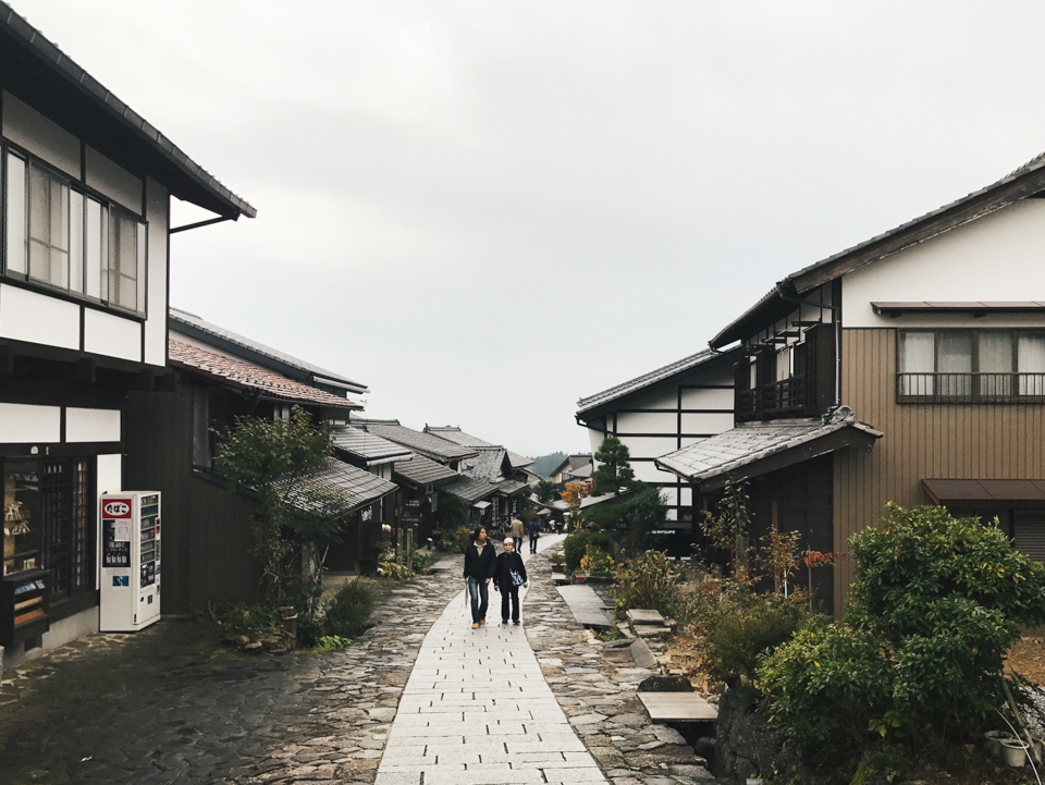 Magome - The cat, you and us