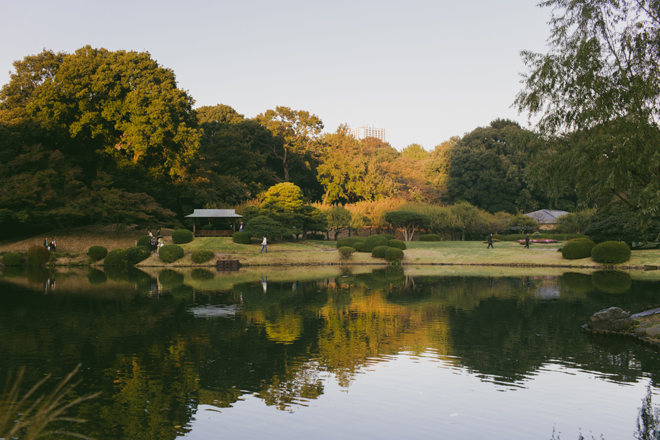 Shinjuku Gyoen Park - The cat, you and us