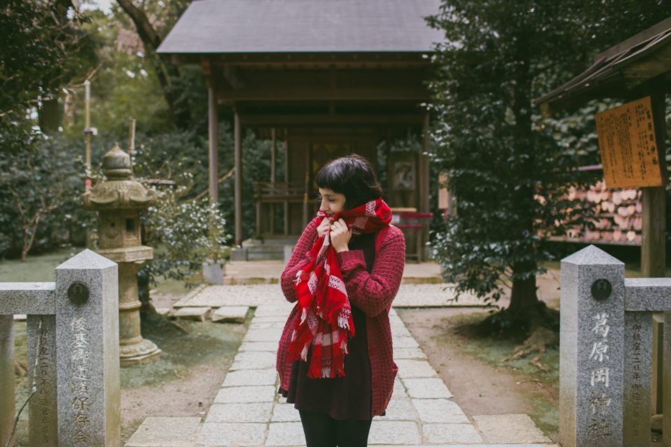 Kuzuharaoka shrine Kamakura - The cat, you and us