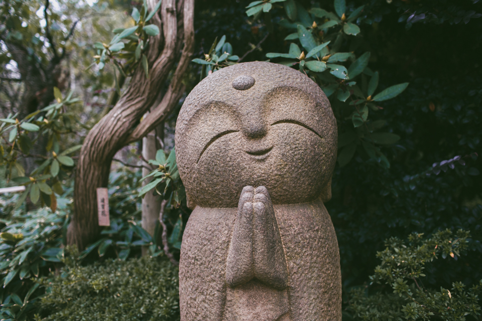 Hase Dera Kamakura - The cat, you and us