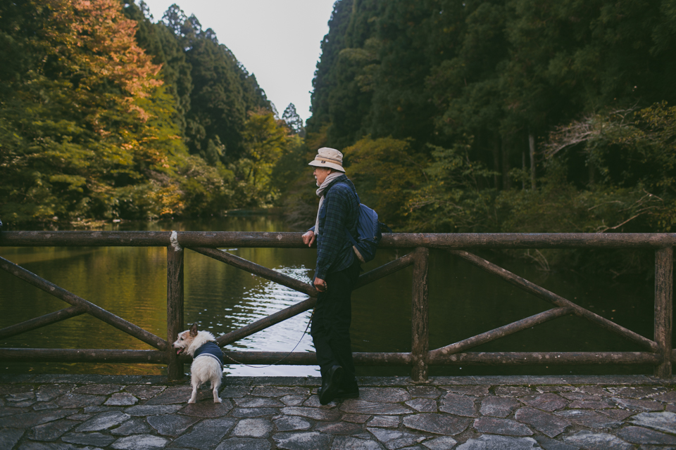 Onshihakone Park - The cat, you and us