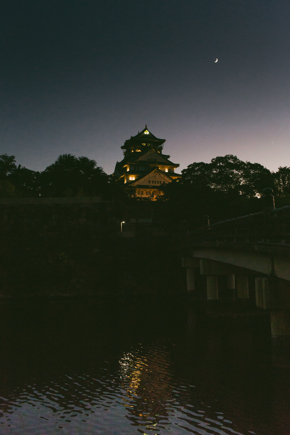 Osaka castle at night - The cat, you and us
