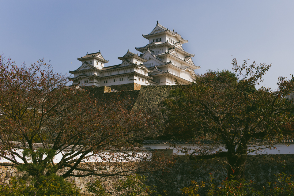 Himeji Castle - The cat, you and us