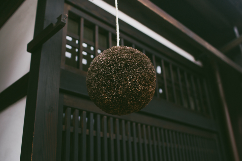 Sugidama dry brown ball in front of Japanese house - The cat, you and us