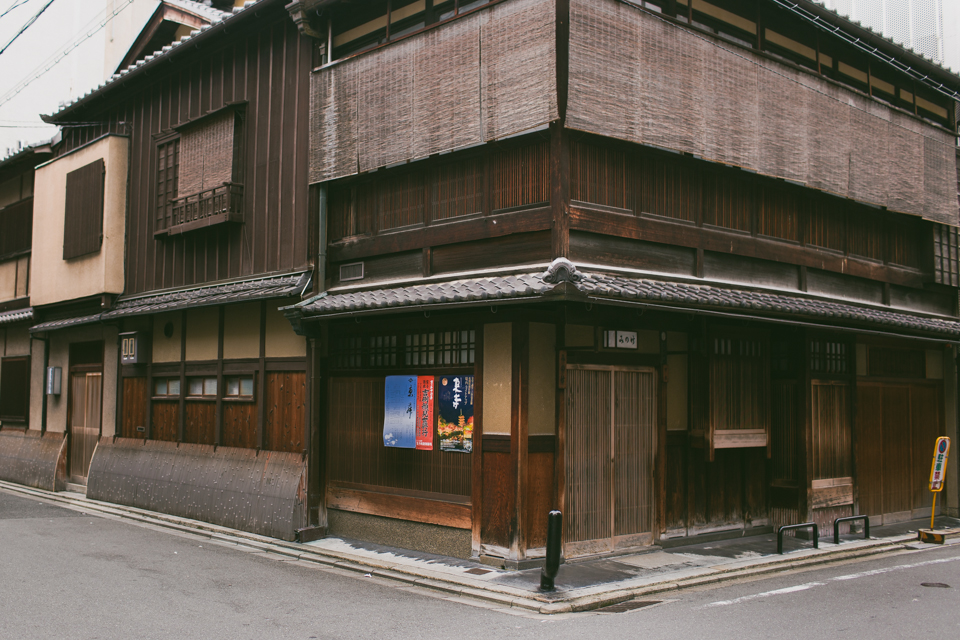 Kyoto - The cat, you and us