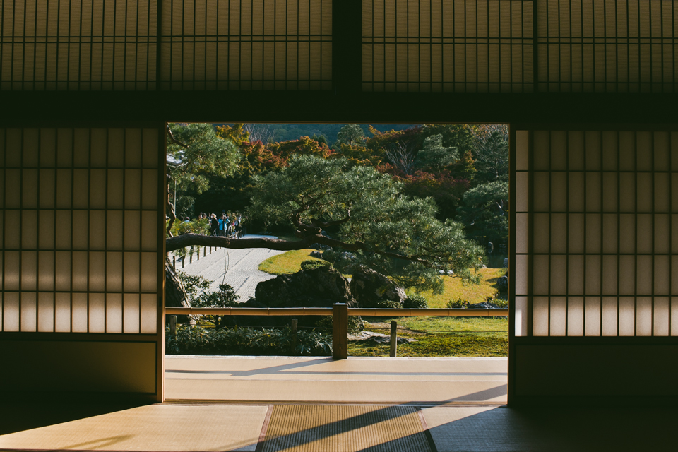 Tenryuji Temple - The cat, you and us