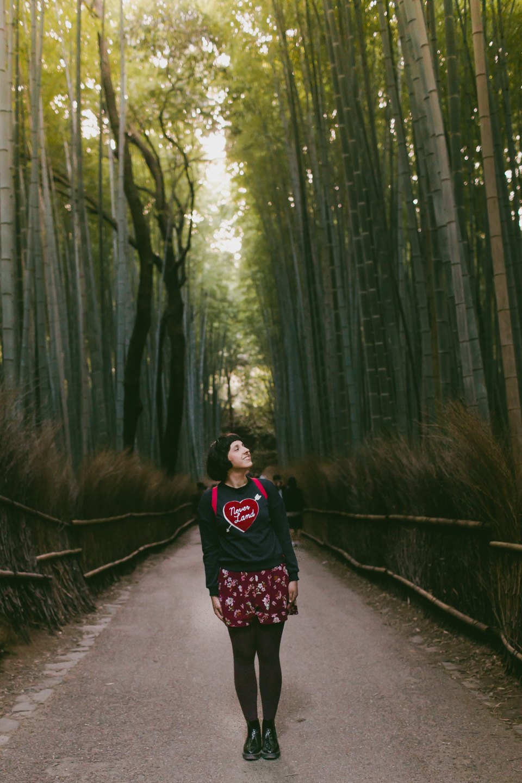 Arashiyama bamboo forest - The cat, you and us