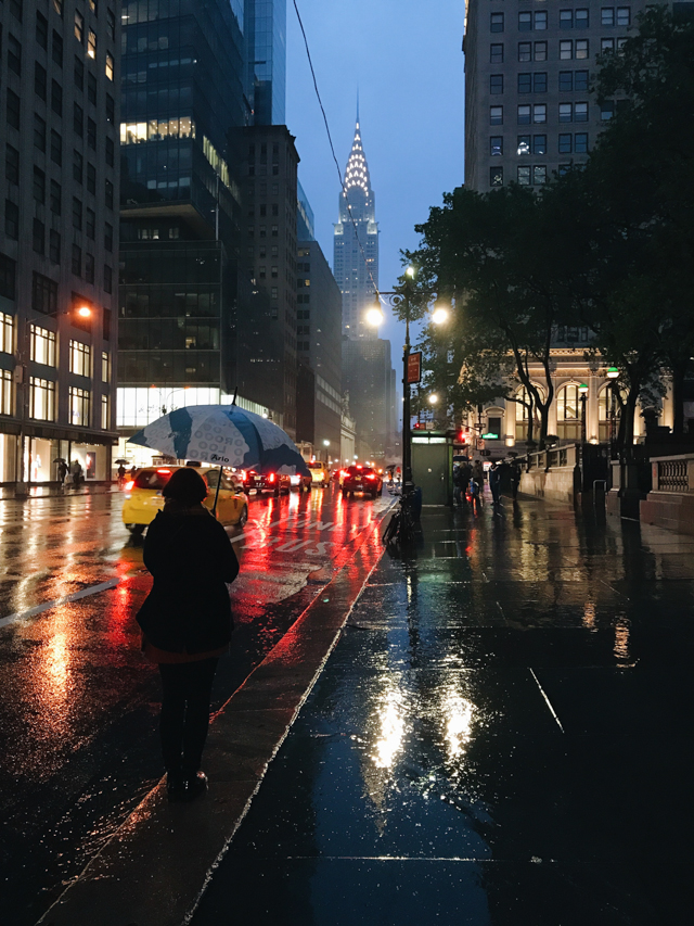 Chrysler building under the rain - The cat, you and us