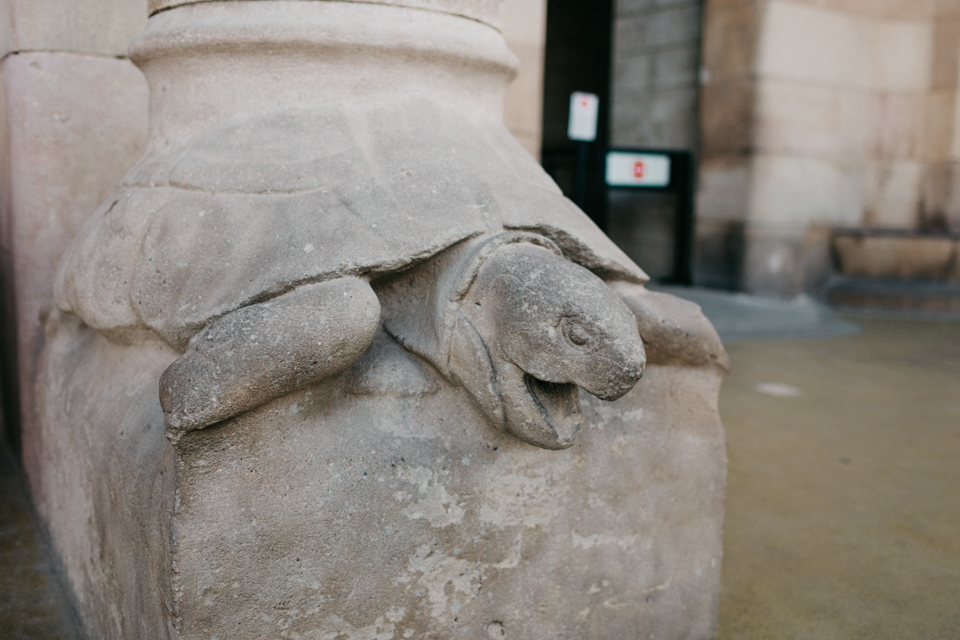 Sagrada Familia turtle column detail - The cat, you and us