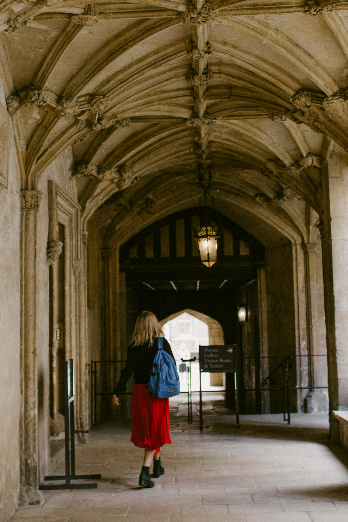 Christ Church College - The cat, you and us