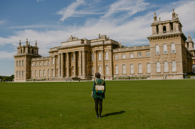 Blenheim palace - The cat, you and us