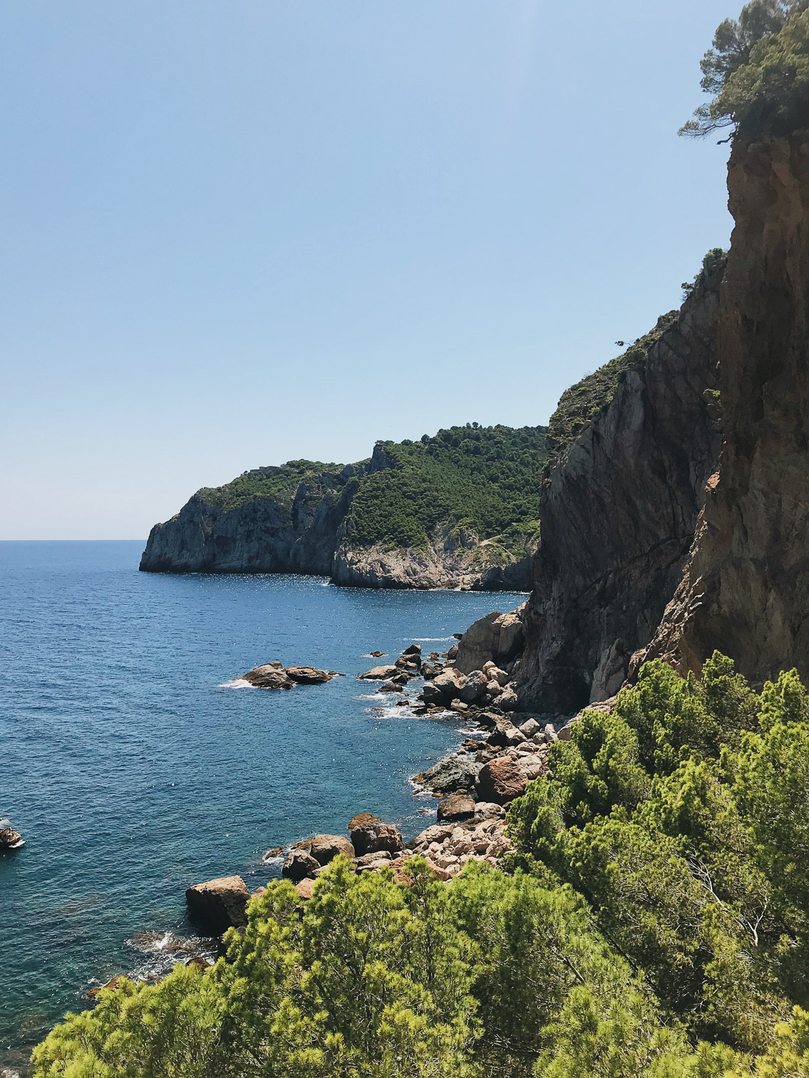 Costa Brava - The cat, you and us